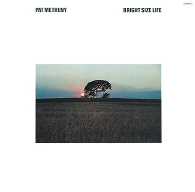 Pat Metheny: Bright Size Life
