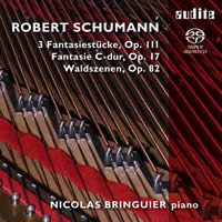 Schumann: Piano Works - Nicolas Bringuier