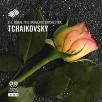 Tchaikovsky: Piano Concerto No. 1, The Seasons - O'Hora, Judd